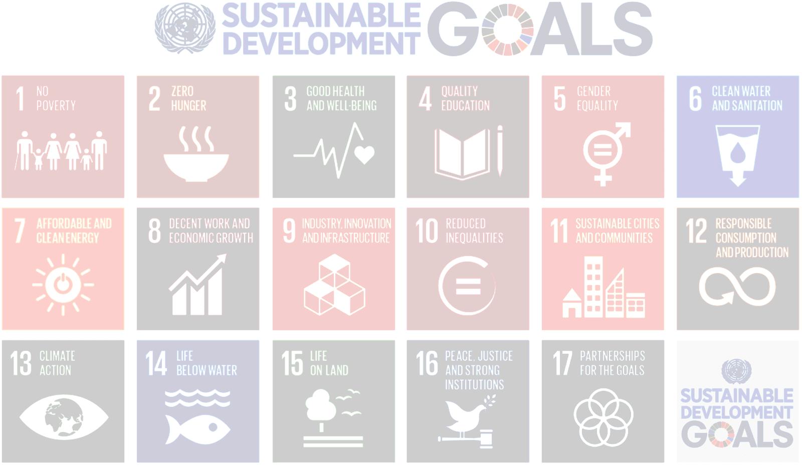 SDGsJR-photo7